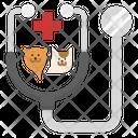 Pets Checkup Icon