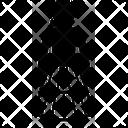 Petticoat Icon