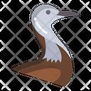 Pheasent Tailed Jacana Icon