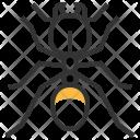 Pheidole Icon