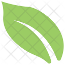 Philodendron Split Leaf Icon