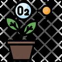 Photosynthesis Plant Oxygen Icon
