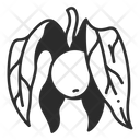 Physalis Icon