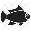 Picasso Fish Icon