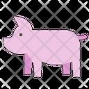 Pig Pork Ham Icon