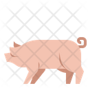 Pig Animal Agriculture Icon