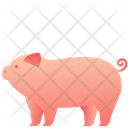 Animal Domestic Pet Icon