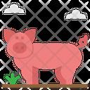 Pig Pock Farm Icon