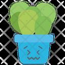 Pig Ear Cactus Succulent Plant Cactus Icon