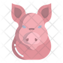 Pig Face Pig Face Icon