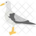 Pigeon Bird Peace Icon