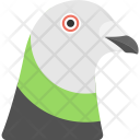 Pigeon Face Animal Icon