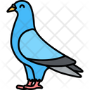 Pigeon Bird Dove Icon