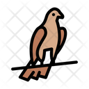 Pigeon Viking Bird Icon