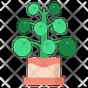 Pilea Peperomioides Nature Green Icon