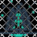 Pine Cedar Fir Tree Icon