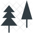 Pine Tree Evergreen Icon