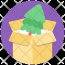 Pine Box Icon