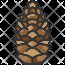 Pine Cone Nut Icon