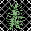 Pine Leaf Leaf Foliage Icon