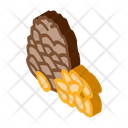 Pine Nut Food Icon