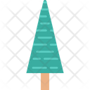 Pine Tree Evergreen Tree Fir Tree Icon