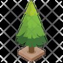 Pine Tree Conifer Tree Nature Icon