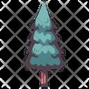 Pine Tree Pine Wood Icon