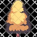 Pine Tree Wood Pine Icon