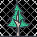 Fir Tree Larch Icon