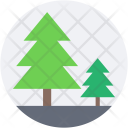 Pine Trees Fir Icon