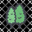 Pine Trees Tree Plant Icon