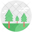 Christmas Tree Fir Icon