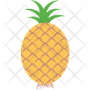 Ananas Fruit Healthy Food Icon