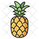 Fruit Pineapple Healthy Icon