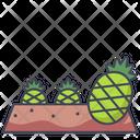 Pineapple Plot Garden Pineapple Icon