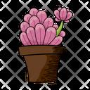 Cactus Plant Pot Icon