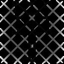 Pinwheel Icon