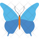 Pipevine Swallowtail Insect Icon