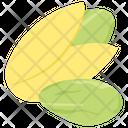 Pistachios Icon