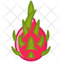 Pitahaya Fruit Dragonfruit Icon