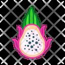 Pitaya Fruits Fruite Icon