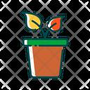 Plan Green Plant Greenery Icon
