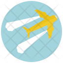 Plane Flight Airplane Icon