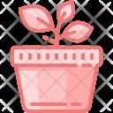 Plant Pot Green Icon
