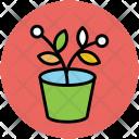 Plant Pot Leafy Icon