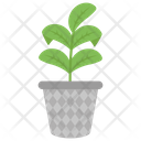 Plant Flower Herb Icon