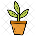 Plant Pot Plant Houseplant Icon