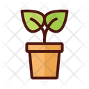 Plant Pot Leaves Icon