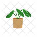 Flower Plant Potted Icon